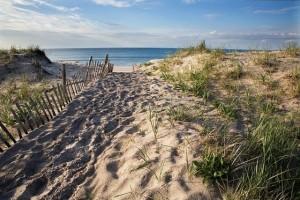 Southampton Beach Scene